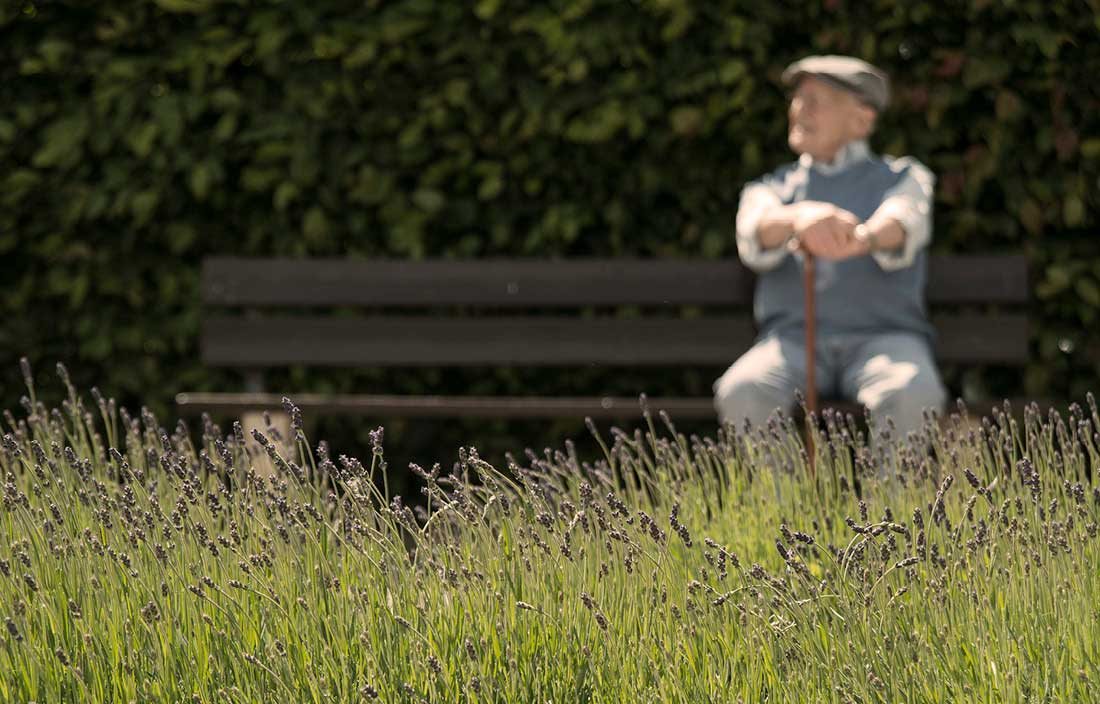 Image of senior sitting on park bench
