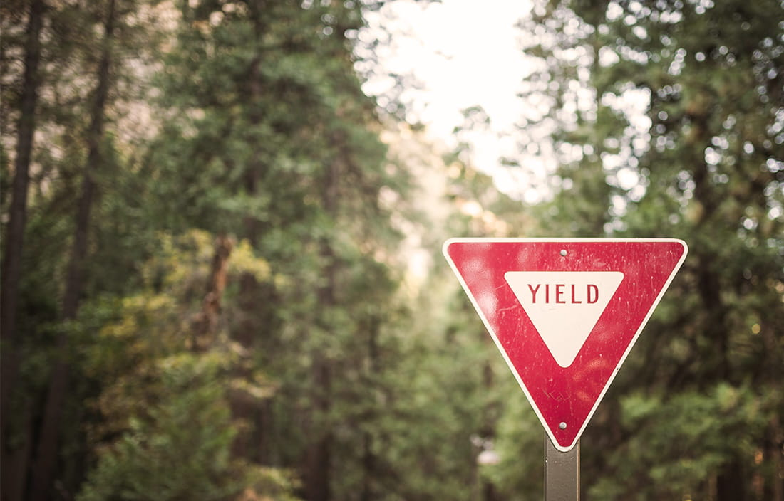 Image of yield sign in forest