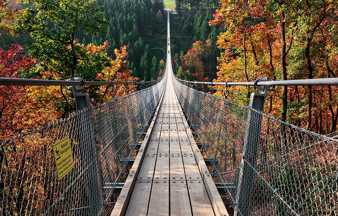 Image of a suspension bridge surrounded by fall foliage.