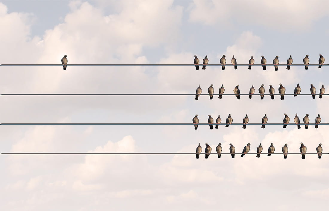 Image of birds on a wire for the 2017 Revolutionizing Healthcare Whitepaper